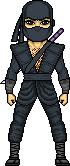 Ninja [2]