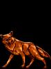 Lobo [2]