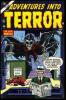 Adventures Into Terror (1950) #029