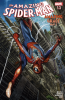 Amazing Spider-Man: Amazing Grace (2016) #001.3