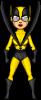 Yellowjacket [2]